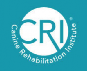 canine rehab institute CCRT