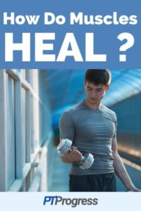 Muscle Strain: How to Heal Sore Muscles