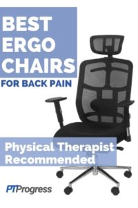 Best Ergonomic Office Chairs for Back Pain