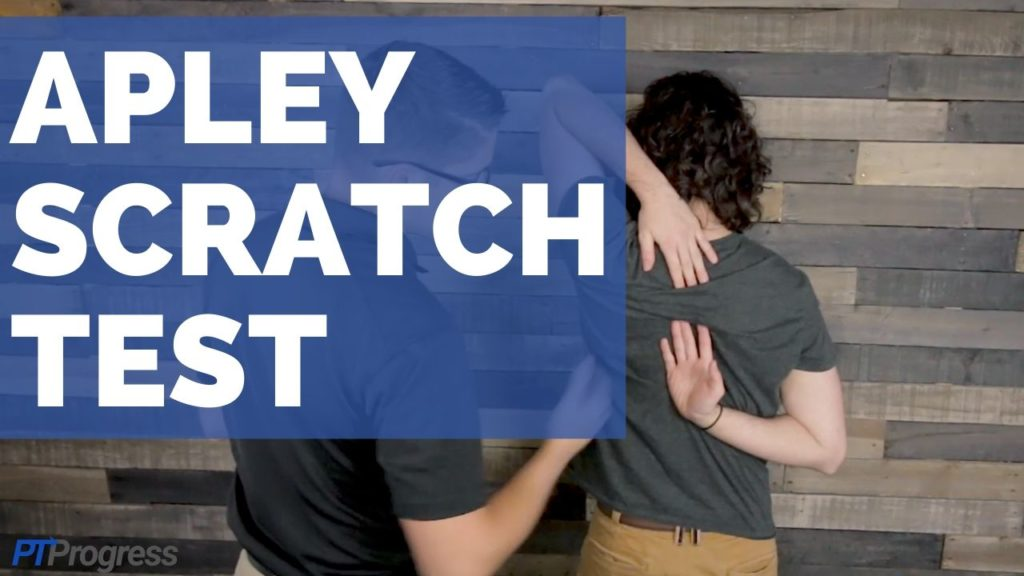 apley scratch test