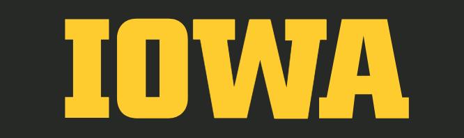 university of Iowa DPT